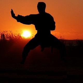 Hapkido Han Moo Kwan
